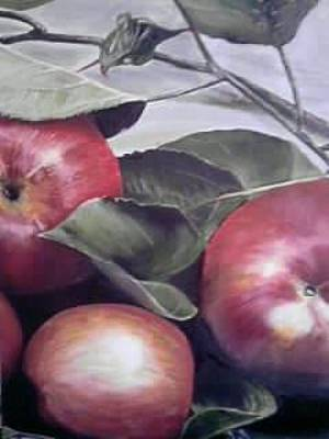 The Apples Original by Sergey Selivanov