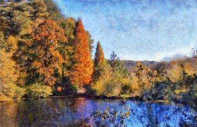 Autumn Scene Digital Art - The Bald Cypress by Daniel Eskridge
