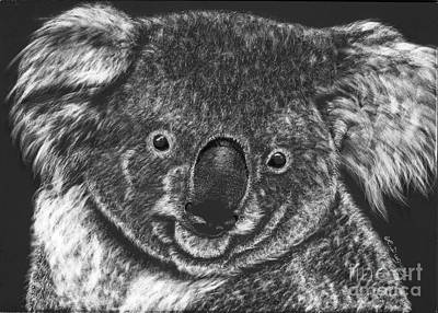 Koala Drawing - The Bear From Down Under by Lora Duguay