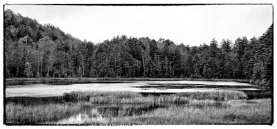 Monotone Photograph - The Beautiful Fly Pond by David Patterson