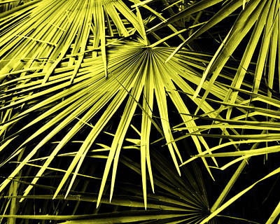 The Beauty Of Nature Print by Gerlinde Keating - Galleria GK Keating Associates Inc