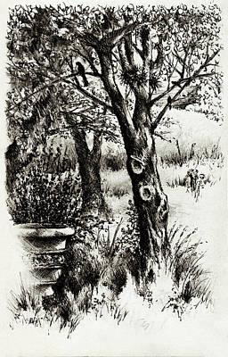 The Bird Bath Print by Rachel Christine Nowicki