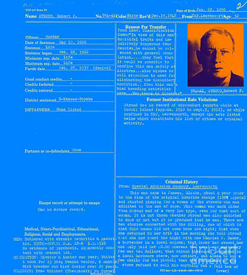 The Birdman Of Alcatraz 20130320 - Blue Print by Wingsdomain Art and Photography