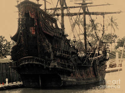 Ko Photograph - The Black Pearl by Cheryl Young