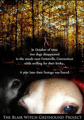 The Blair Witch Greyhound Project Print by Ray LeCara Jr