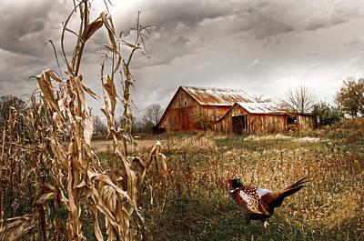 Rabbit Hunting Photograph - The Blast Off Underfoot by Randall Branham