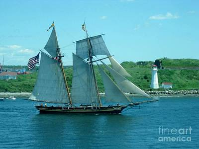 American Tall Ship Sails Past Mcnabs Island Print by John Malone