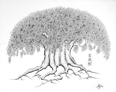 The Boddhi Tree Print by Robert May