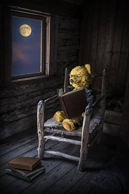 Teddie Photograph - The Bookworm by Randall Nyhof
