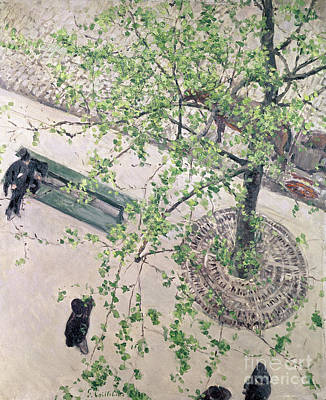 Cobbles Painting - The Boulevard Viewed From Above by Gustave Caillebotte