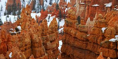 Bryce Canyon National Park Photograph - The Bryce Canyon Series Viii by Scott Cameron