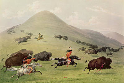 The Horse Painting - The Buffalo Hunt by George Catlin