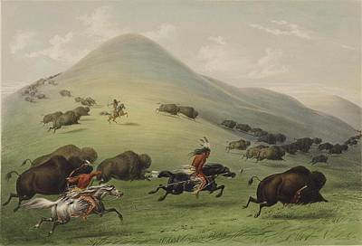 Bison Painting - The Buffalo Hunt by George Catlin