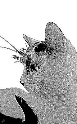 The Cat Print by Ben and Raisa Gertsberg