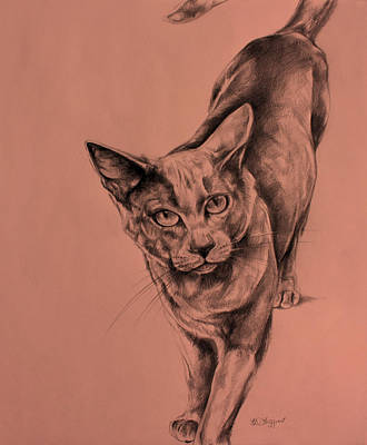The Cat  Original by Derrick Higgins