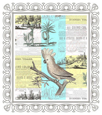 Cockatoo Digital Art - The Cockatoo's Tropical Dream by Antique Images