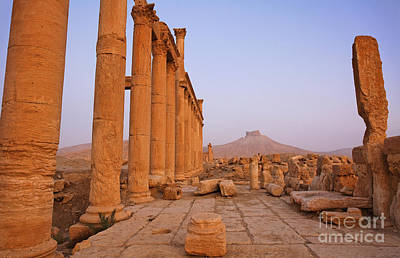 Palmyra Photograph - The Colonnaded Street And Arab Castle At Palmyra Syria by Robert Preston
