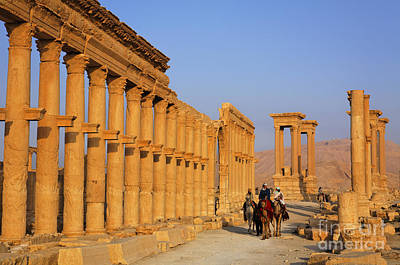 Camel Photograph - The Colonnaded Street Palmyra Syria by Robert Preston