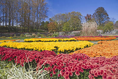 Country Photograph - The Color Garden by Betsy C Knapp