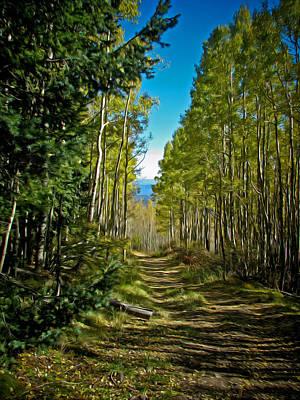 Grand Memories Painting - The Cool Path Through Arizona Aspens by John Haldane