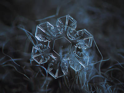 Microscopy Photograph - Snowflake Photo - The Core by Alexey Kljatov