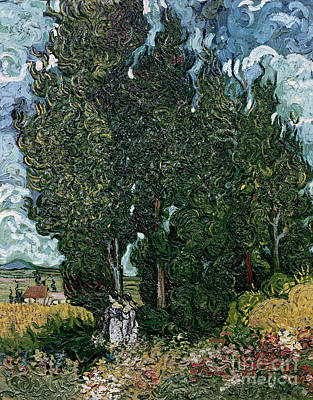 Sisters Painting - The Cypresses by Vincent van Gogh