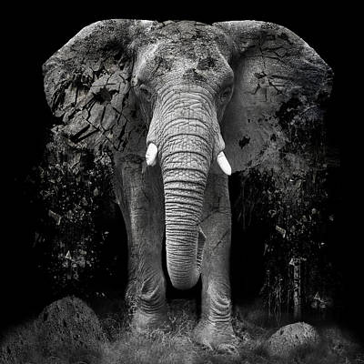 The Disappearance Of The Elephant Print by Erik Brede