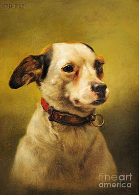 Sports Painting - The Dog by Celestial Images