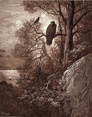 Magpies Drawing - The Eagle And The Magpie by Litz Collection