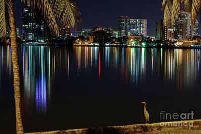 The Egrets View Print by Rene Triay Photography
