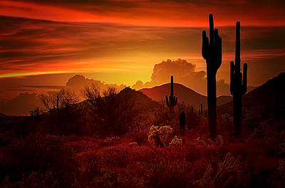 The Essence Of The Southwest Print by Saija  Lehtonen