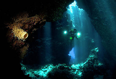 Diver Photograph - The Explorer by Csaba Tokolyi