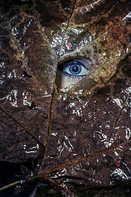 Hiding Photograph - The Eye by Joana Kruse