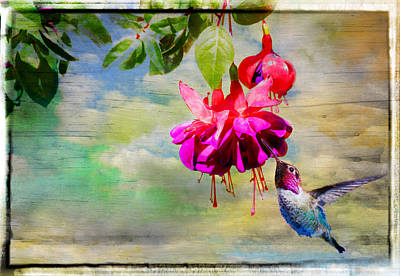 The Face Of Fuchsia Print by Lynn Bauer