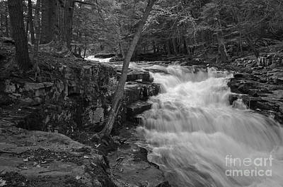 Pa State Parks Photograph - The Falls by David Rucker