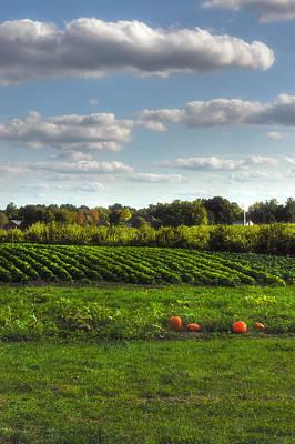 Farm Stand Photograph - The Farm by Joann Vitali