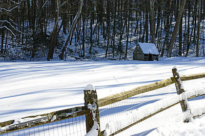 Mill In Woods Photograph - The Fence Line by Paul Ward