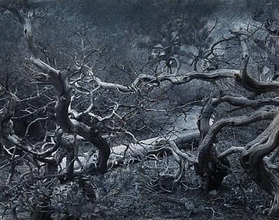 Tree Roots Digital Art - The Fight by Jeff Burgess