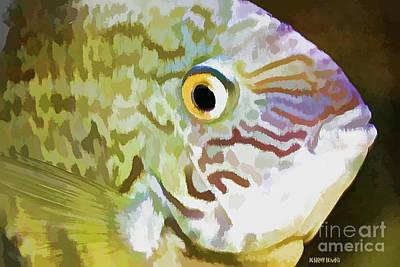 The Fish Print by Deborah Benoit