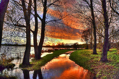 Images Of Cats Photograph - The Flooded Sunset Path by Kim Shatwell-Irishphotographer
