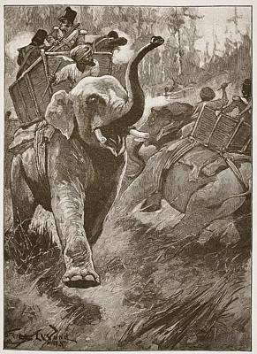 Company Drawing - The Frightened Elephants Rushed Back by Stanley L. Wood