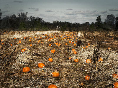 Farm Stand Photograph - The Frost Is On The Pumpkins by Phil Welsher