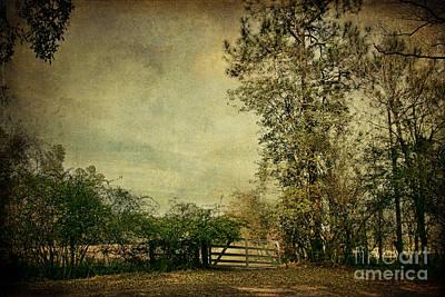 The Gate Print by Joan McCool