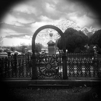 Holga Camera Photograph - The Gate by Paul Anderson