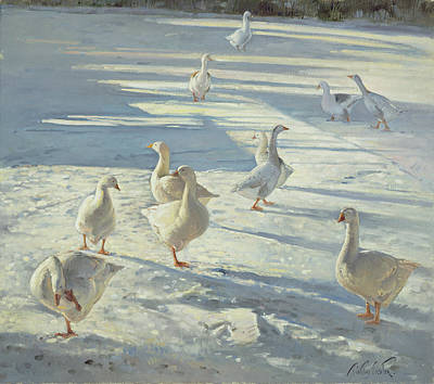 Snow Geese Painting - The Gathering  by Timothy Easton