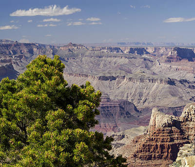 The Grand Canyon Print by Marianne Campolongo
