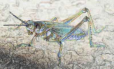 Grasshopper Digital Art - The Grasshopper by David Lee Thompson