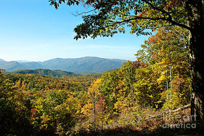 The Great Smoky Mountains Print by Lena Auxier