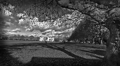 Trees Photograph - The Green Richmond by Maj Seda
