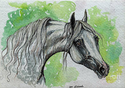 The Grey Arabian Horse 15 Print by Angel  Tarantella